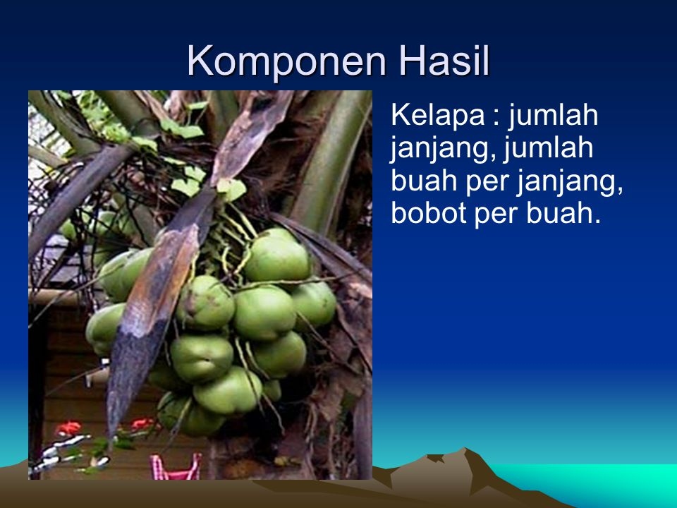 Komponen Hasil Kelapa : jumlah janjang, jumlah buah per janjang, bobot per buah.