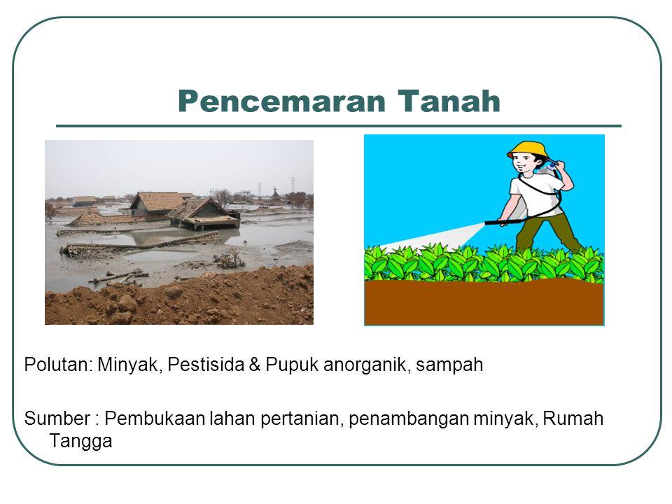 Pencemaran Tanah Polutan: Minyak, Pestisida & Pupuk anorganik, sampah Sumber : Pembukaan lahan pertanian, penambangan minyak, Rumah Tangga