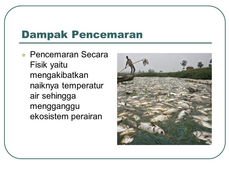 Dampak Pencemaran Pencemaran Secara Fisik yaitu mengakibatkan naiknya temperatur air sehingga mengganggu ekosistem perairan.