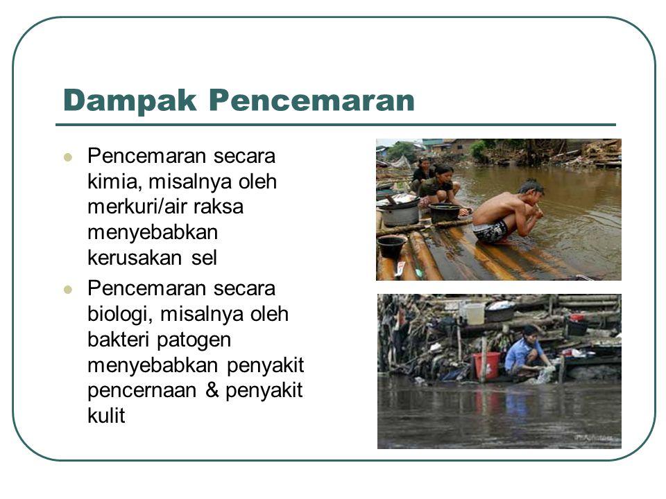 Dampak Pencemaran Pencemaran secara kimia, misalnya oleh merkuri/air raksa menyebabkan kerusakan sel.