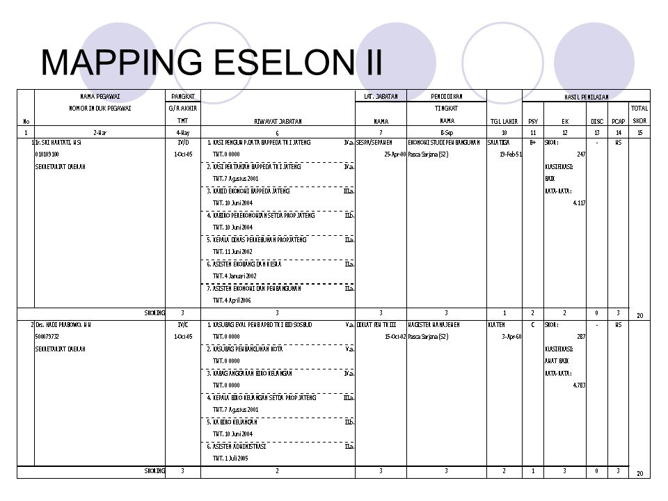 MAPPING ESELON II