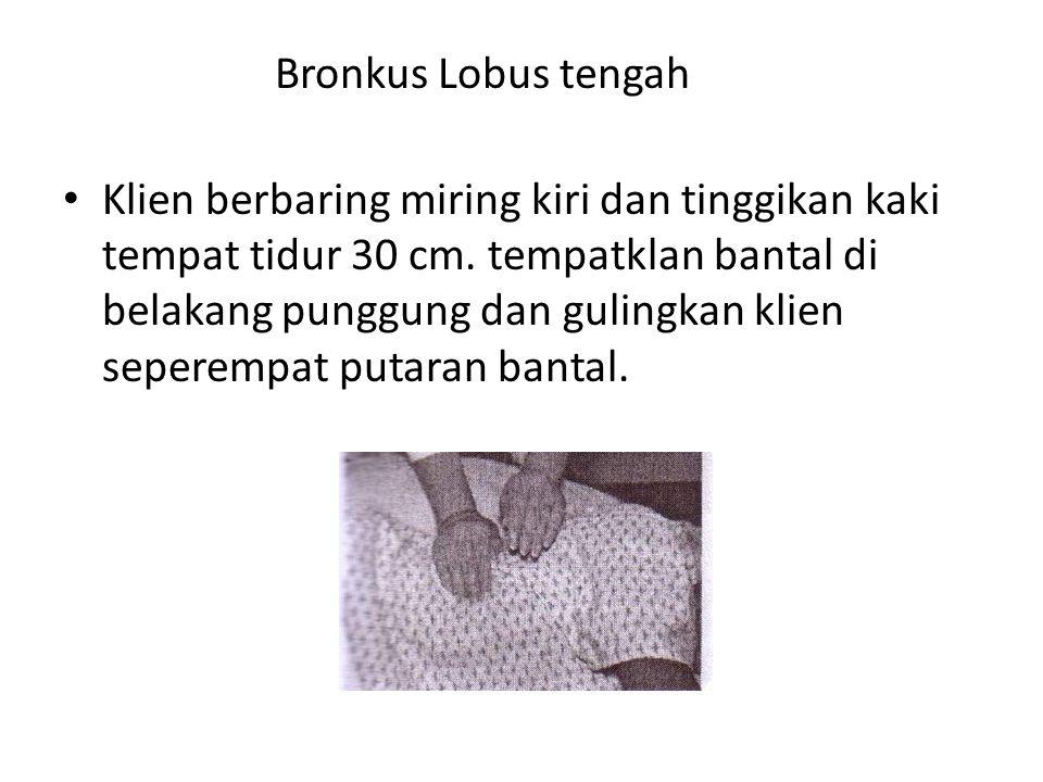Bronkus Lobus tengah