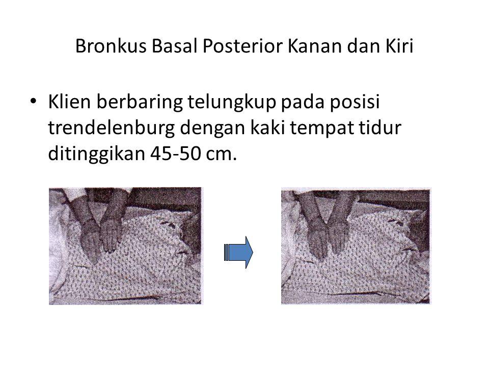 Bronkus Basal Posterior Kanan dan Kiri
