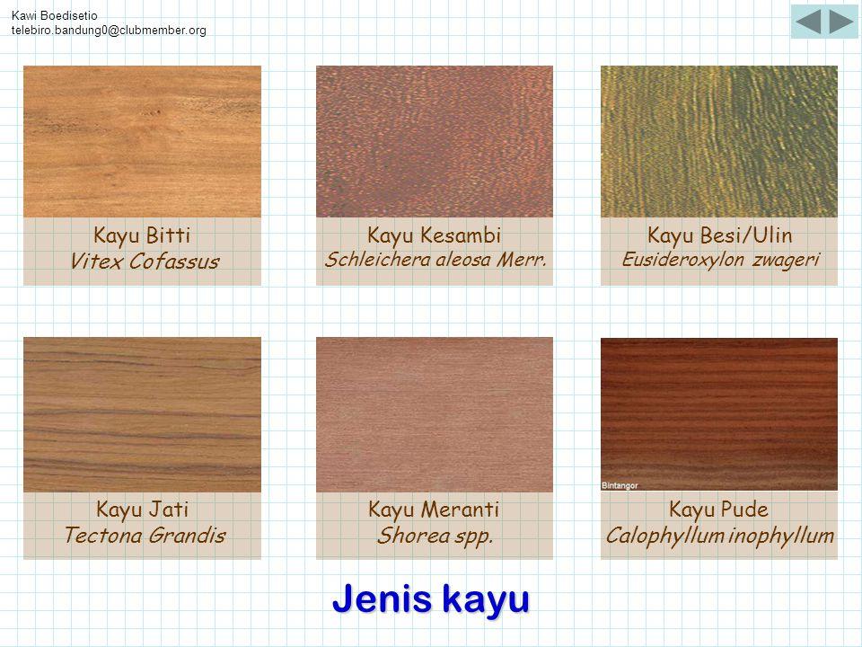 Jenis kayu Kayu Bitti Vitex Cofassus Kayu Kesambi Kayu Besi/Ulin