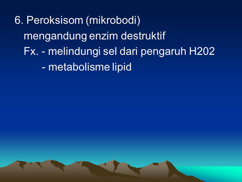 6. Peroksisom (mikrobodi)
