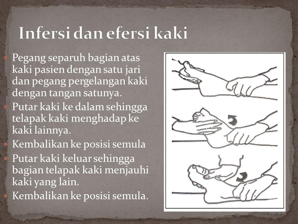 Infersi dan efersi kaki