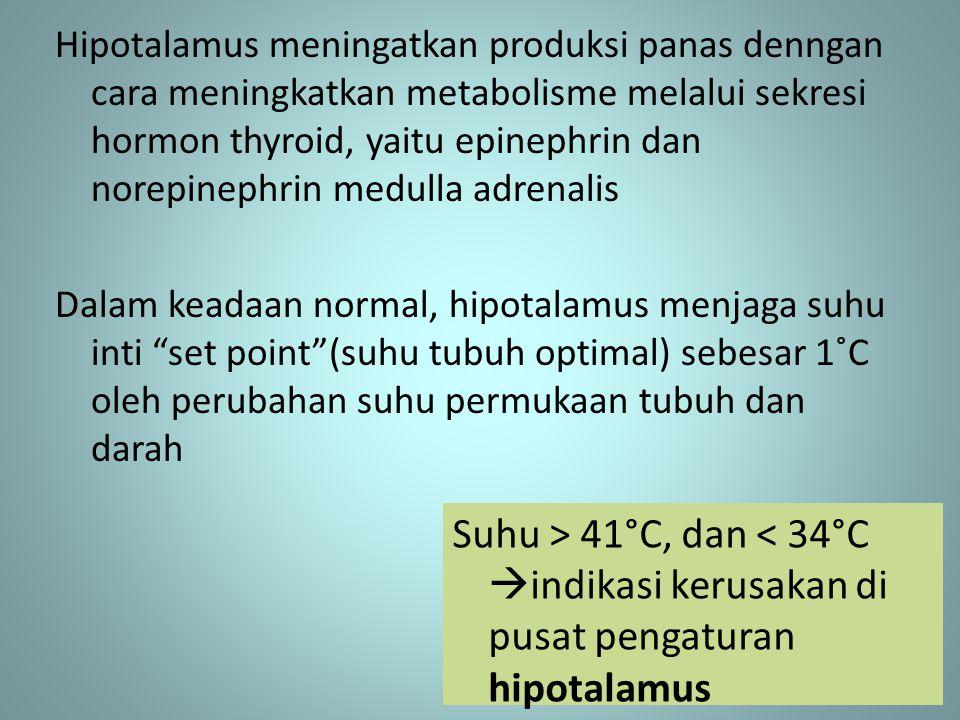Hipotalamus meningatkan produksi panas denngan cara meningkatkan metabolisme melalui sekresi hormon thyroid, yaitu epinephrin dan norepinephrin medulla adrenalis Dalam keadaan normal, hipotalamus menjaga suhu inti set point (suhu tubuh optimal) sebesar 1˚C oleh perubahan suhu permukaan tubuh dan darah