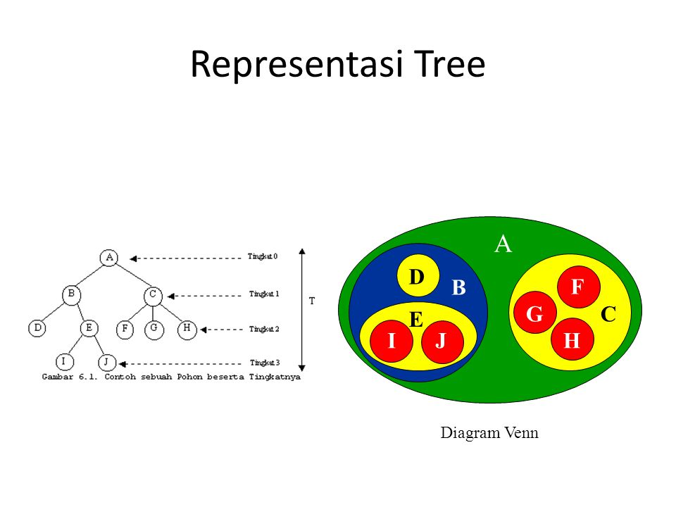 Representasi Tree A E D B F G C E I J H Diagram Venn
