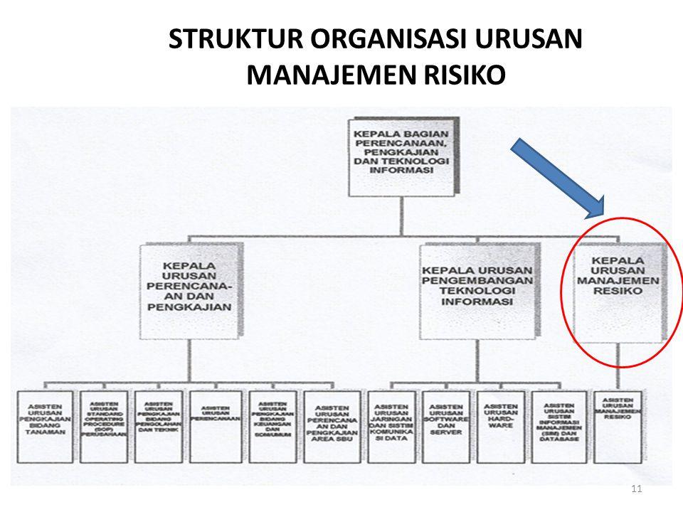STRUKTUR ORGANISASI URUSAN MANAJEMEN RISIKO