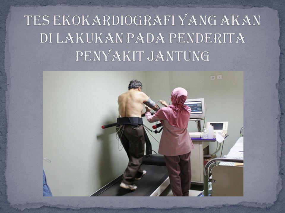 Tes ekokardiografi yang akan di lakukan pada penderita penyakit jantung