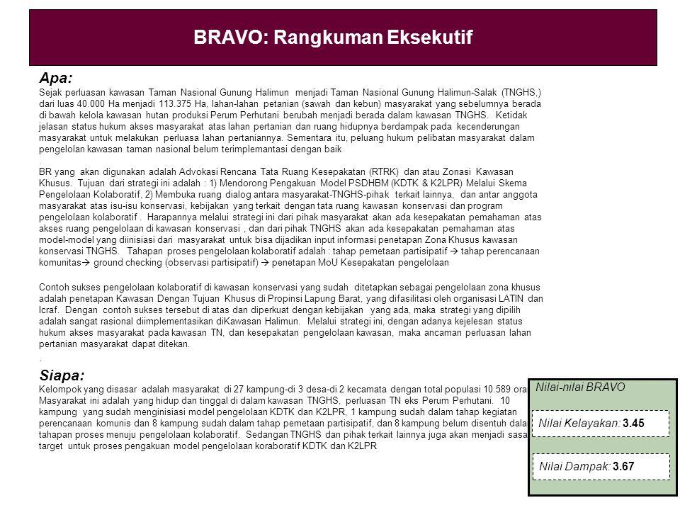 BRAVO: Rangkuman Eksekutif