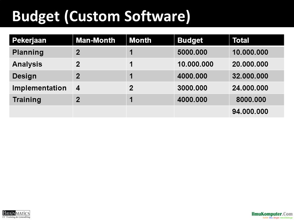 Budget (Custom Software)
