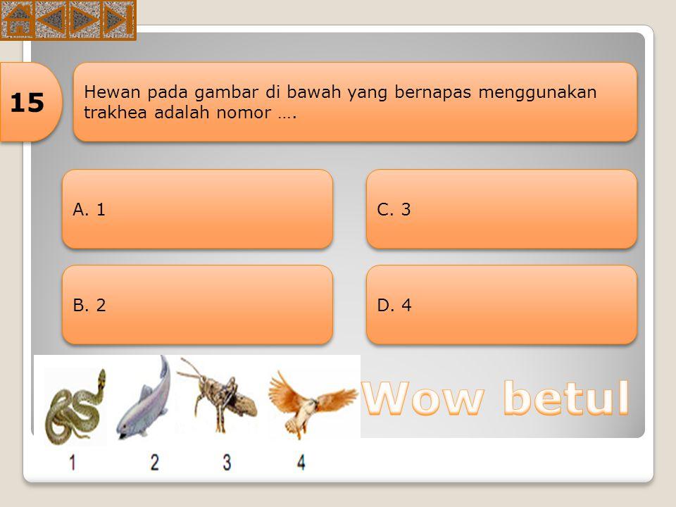15 Hewan pada gambar di bawah yang bernapas menggunakan trakhea adalah nomor …. A. 1. C. 3. B. 2.