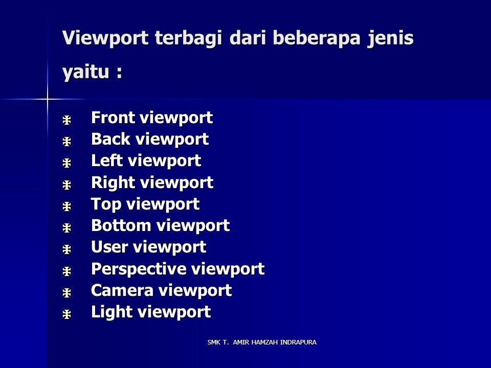 Viewport terbagi dari beberapa jenis yaitu :