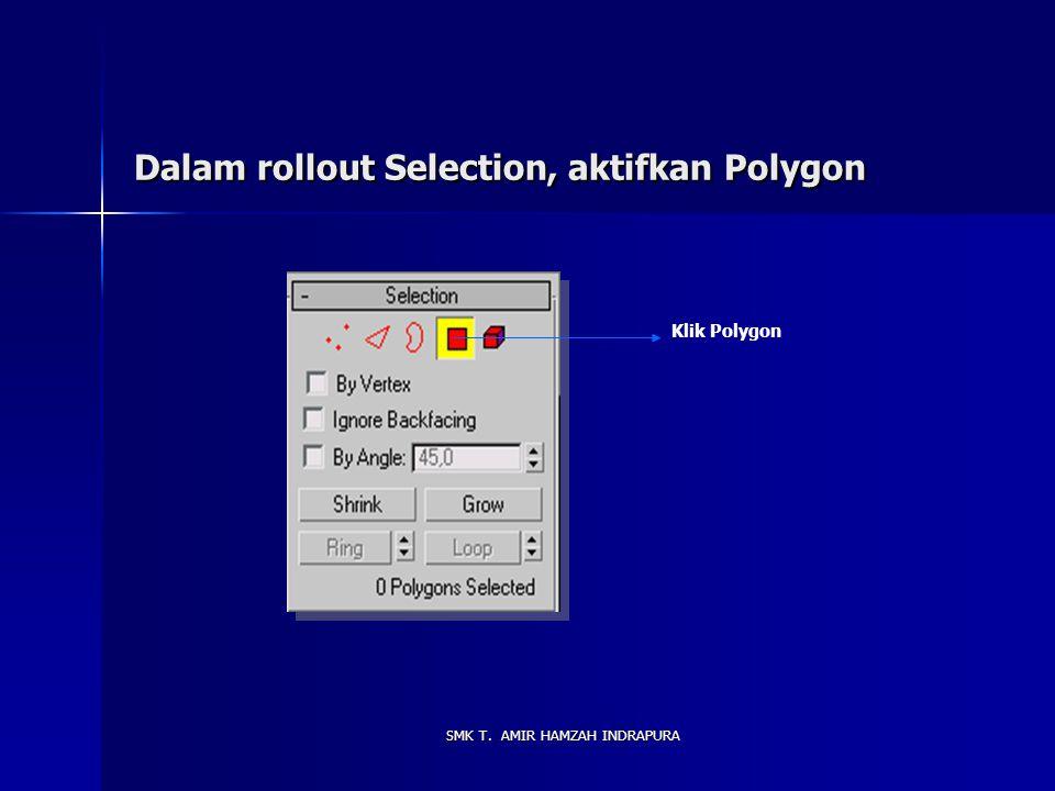 Dalam rollout Selection, aktifkan Polygon
