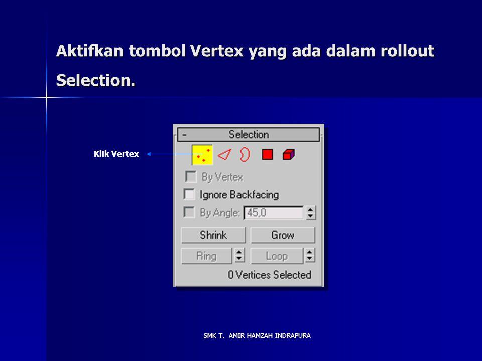 Aktifkan tombol Vertex yang ada dalam rollout Selection.