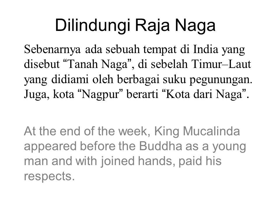Dilindungi Raja Naga