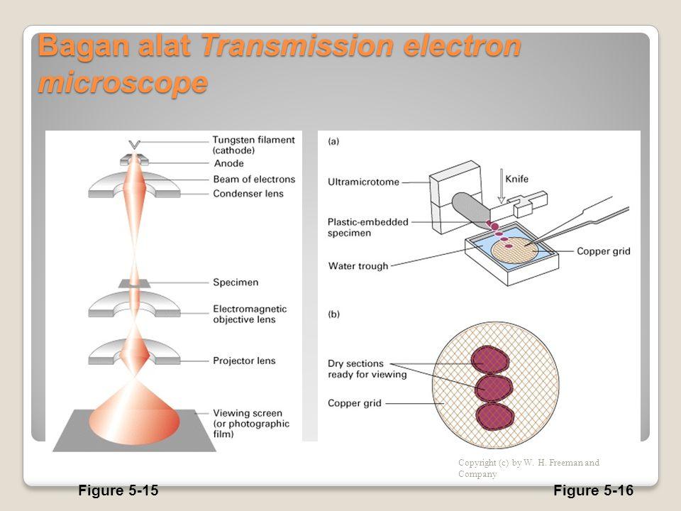 Bagan alat Transmission electron microscope