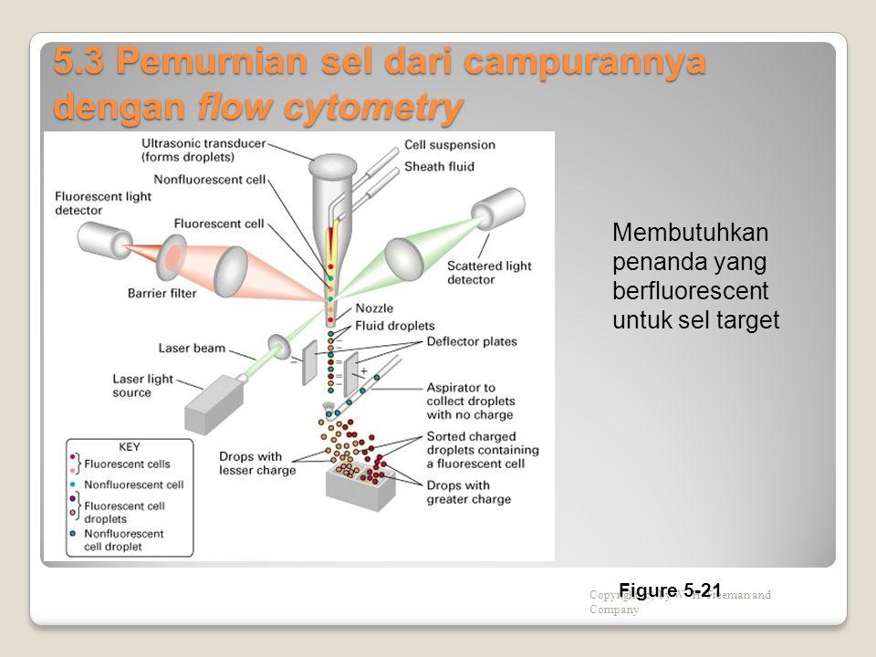 5.3 Pemurnian sel dari campurannya dengan flow cytometry