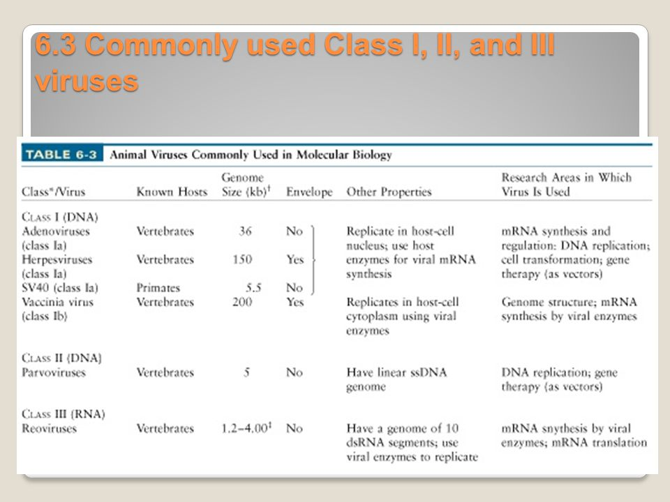 6.3 Commonly used Class I, II, and III viruses