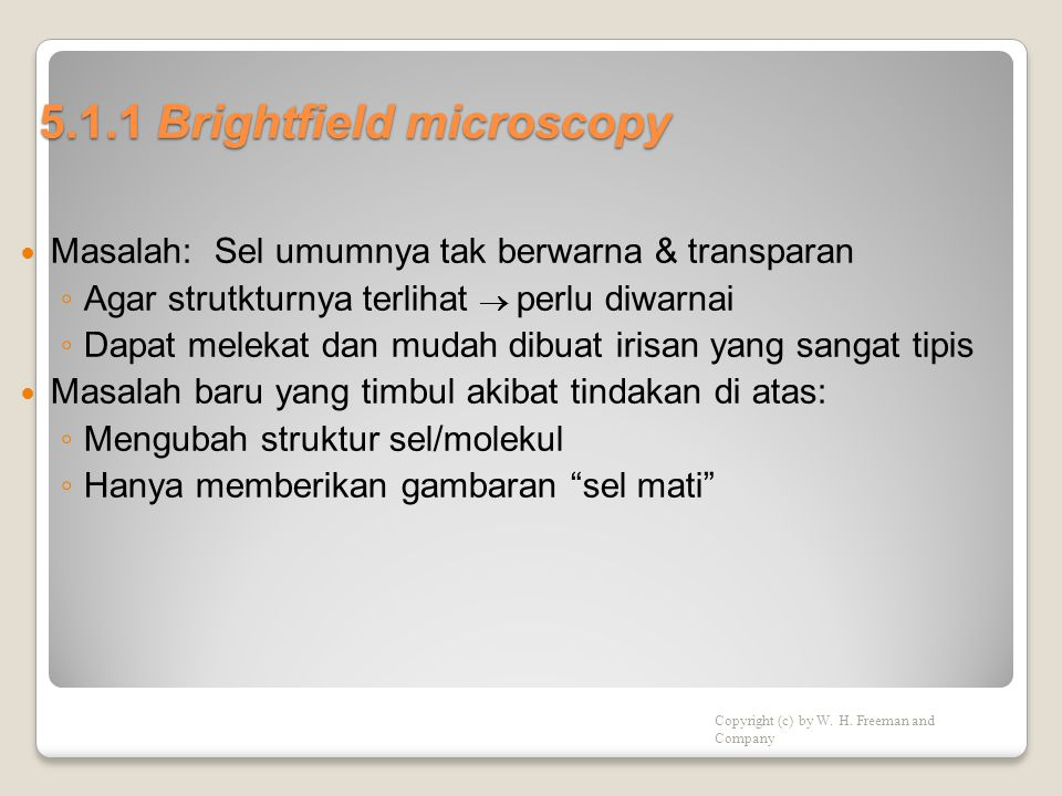 5.1.1 Brightfield microscopy