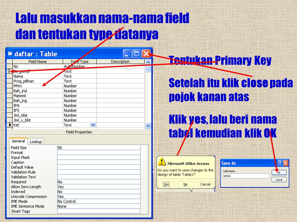 Lalu masukkan nama-nama field dan tentukan type datanya