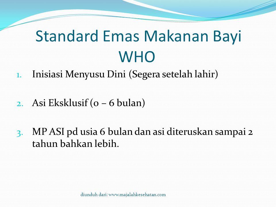 Standard Emas Makanan Bayi WHO