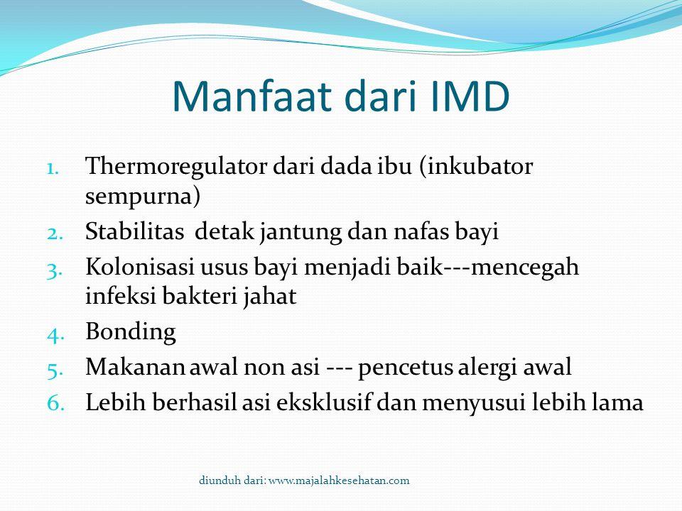 Manfaat dari IMD Thermoregulator dari dada ibu (inkubator sempurna)