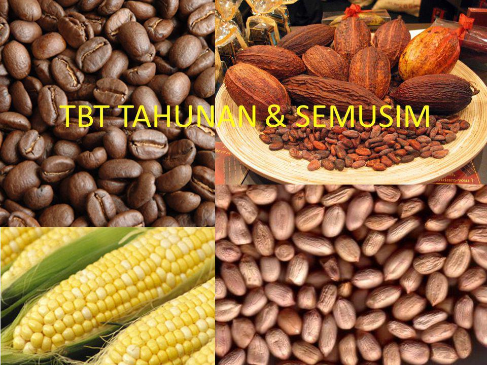 TBT TAHUNAN & SEMUSIM