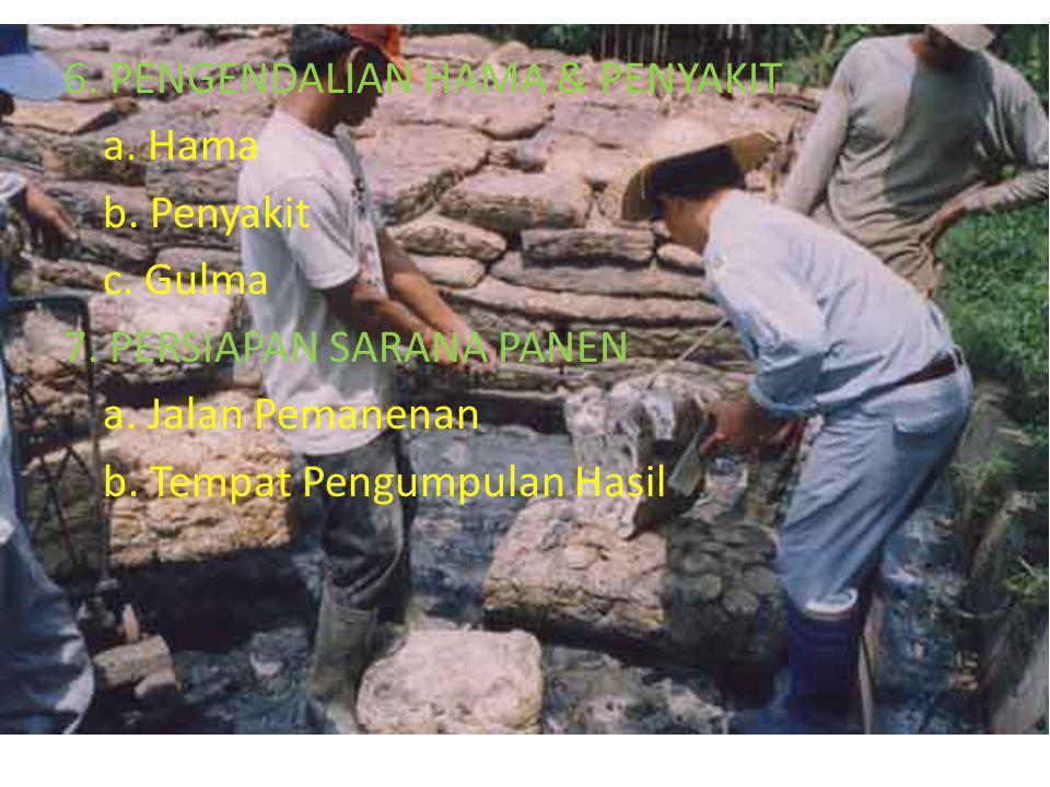 6. PENGENDALIAN HAMA & PENYAKIT a. Hama b. Penyakit c. Gulma 7