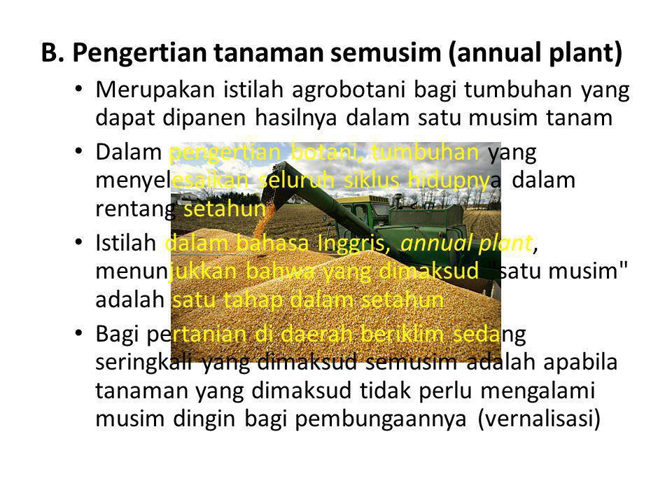 B. Pengertian tanaman semusim (annual plant)