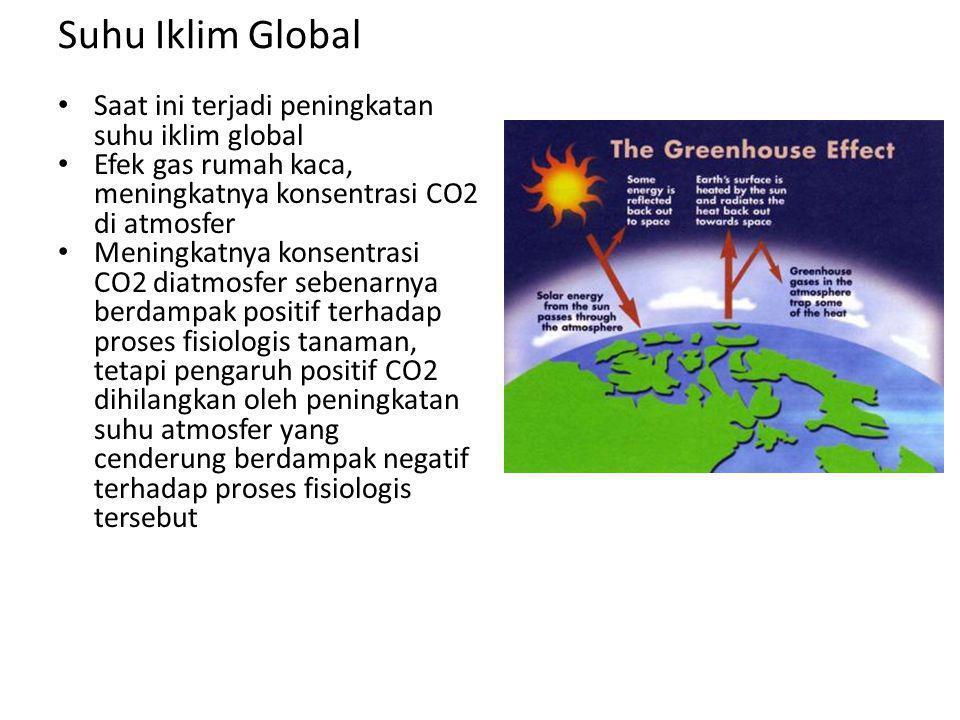 Suhu Iklim Global Saat ini terjadi peningkatan suhu iklim global