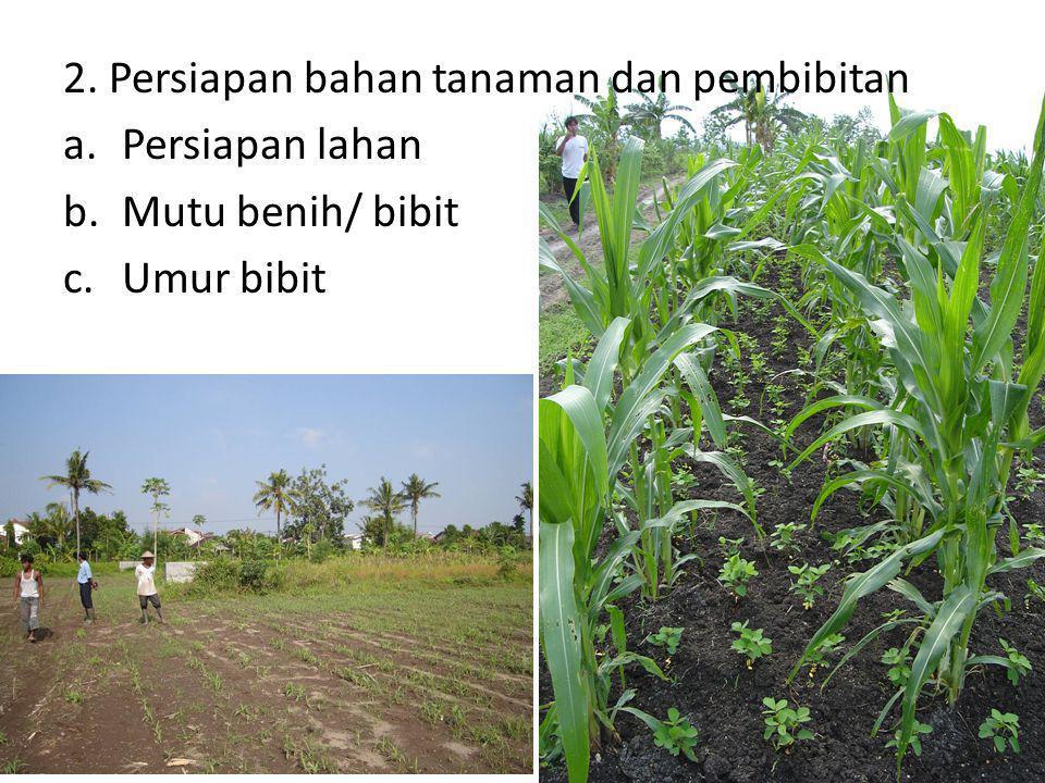 2. Persiapan bahan tanaman dan pembibitan