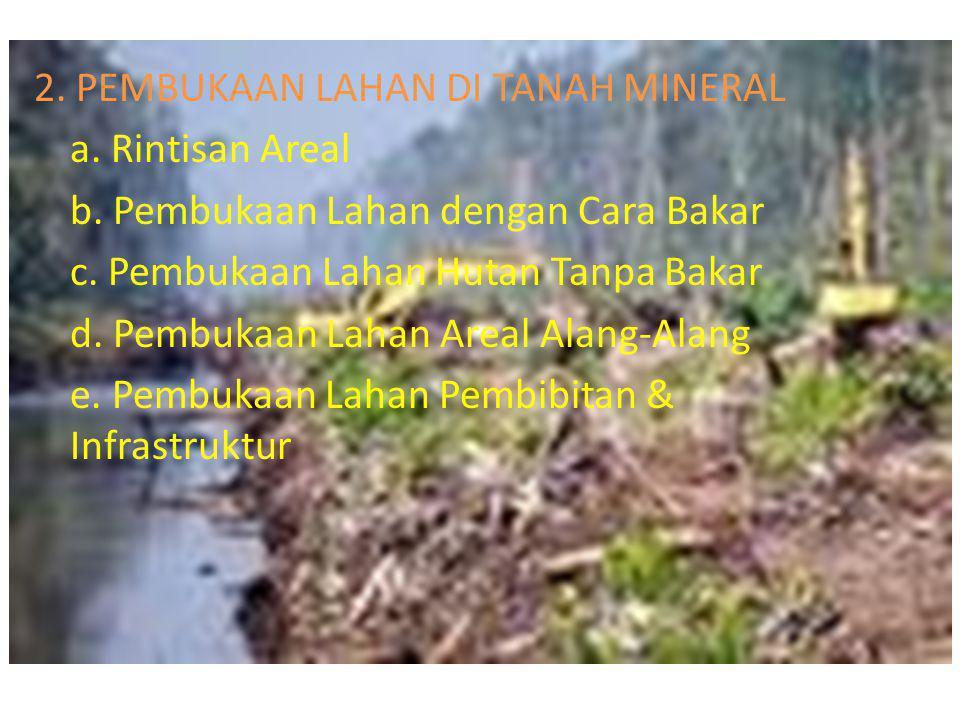 2. PEMBUKAAN LAHAN DI TANAH MINERAL a. Rintisan Areal b