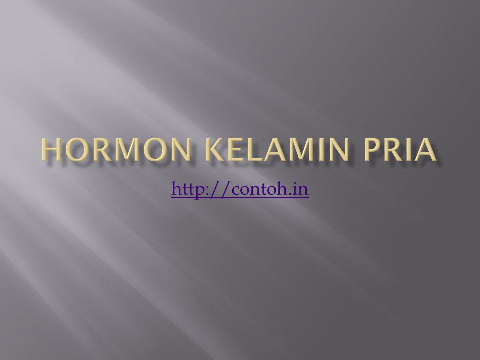 Hormon Kelamin Pria http://contoh.in