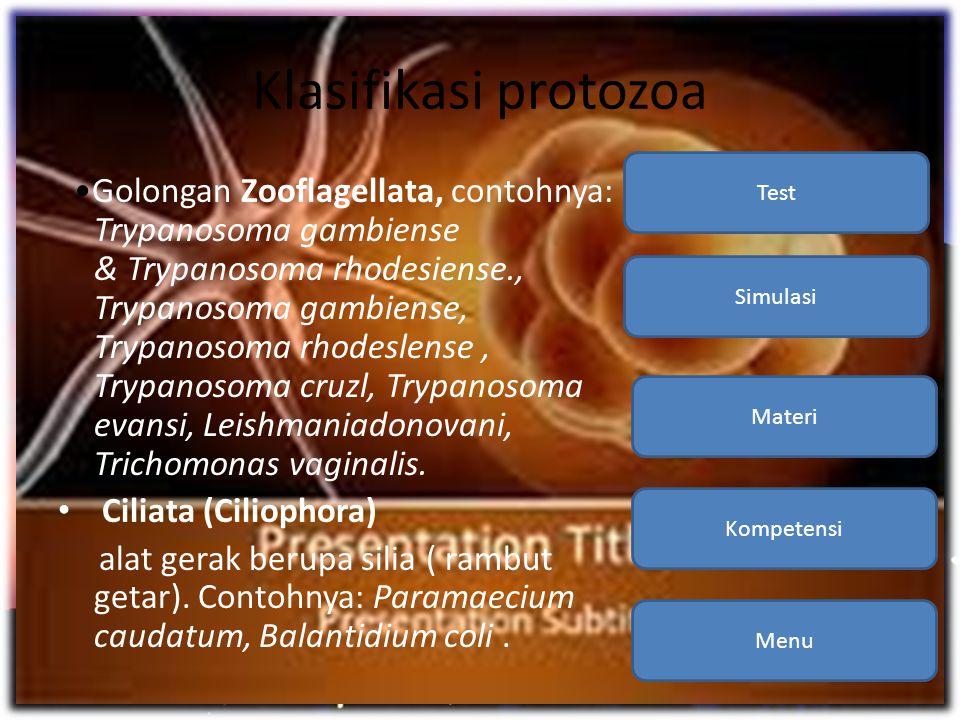 Klasifikasi protozoa Kompetensi. Materi. Simulasi. Test.