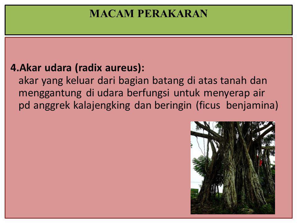 MACAM PERAKARAN