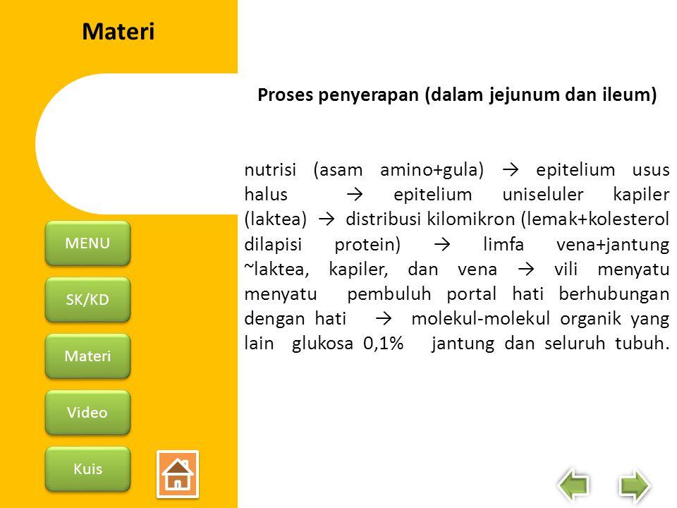 Proses penyerapan (dalam jejunum dan ileum)