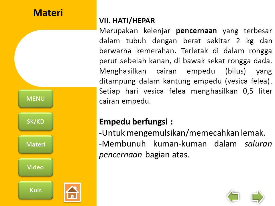 Materi Empedu berfungsi : -Untuk mengemulsikan/memecahkan lemak.