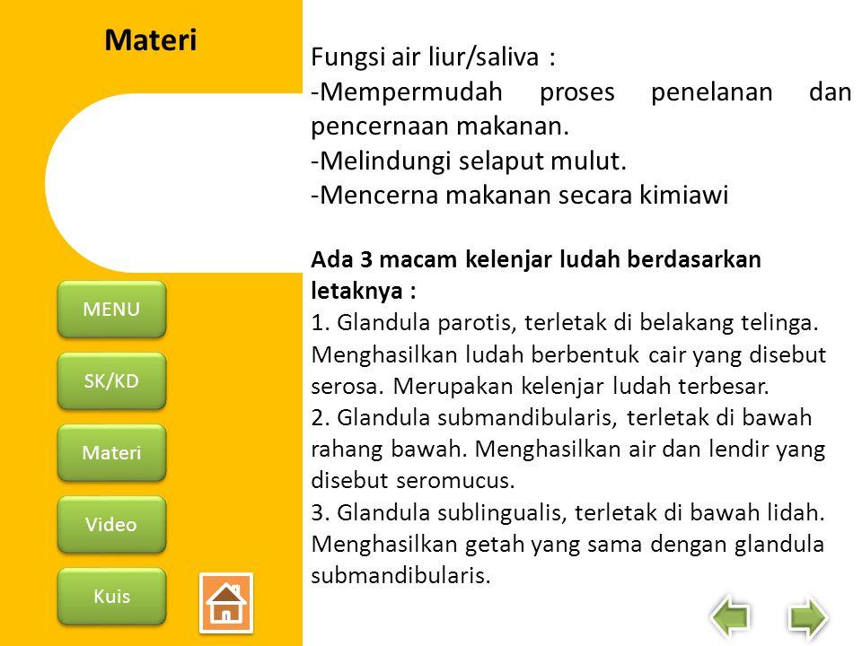 Materi Fungsi air liur/saliva :