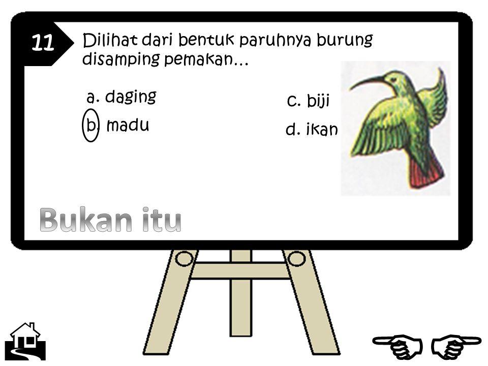 11 Dilihat dari bentuk paruhnya burung disamping pemakan… a. daging. c. biji. b. madu. d. ikan.