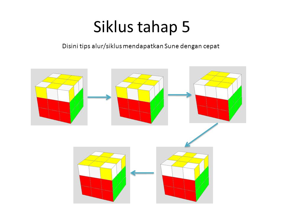 Siklus tahap 5 Disini tips alur/siklus mendapatkan Sune dengan cepat