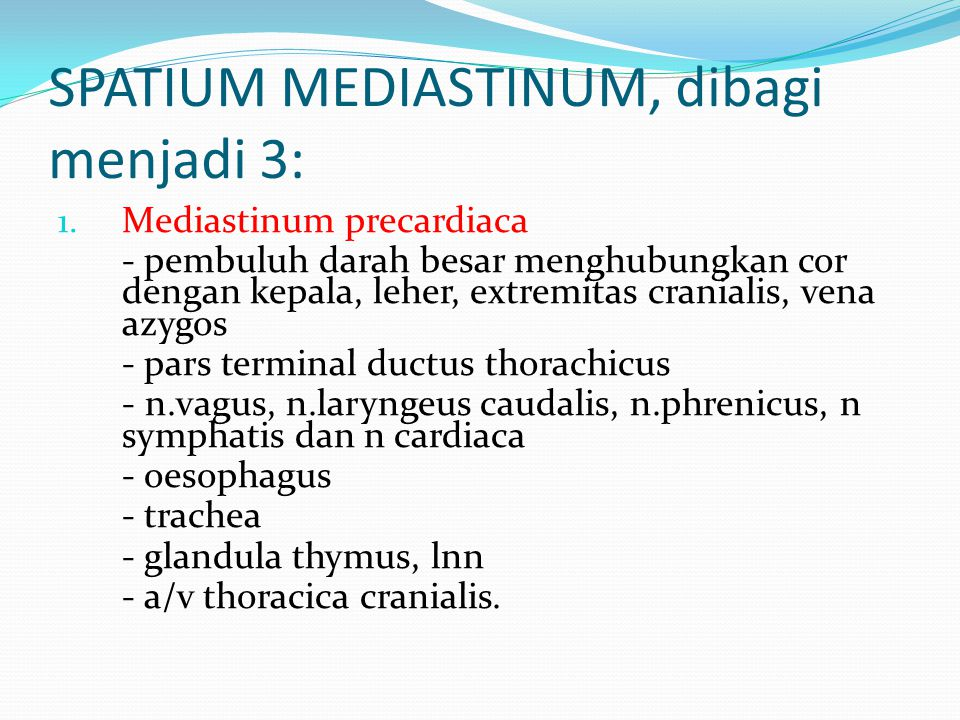 SPATIUM MEDIASTINUM, dibagi menjadi 3: