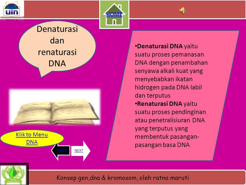 Denaturasi dan renaturasi DNA