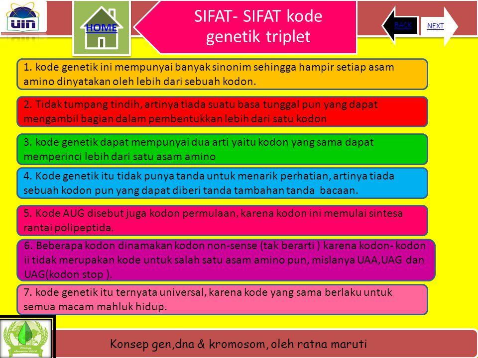 SIFAT- SIFAT kode genetik triplet