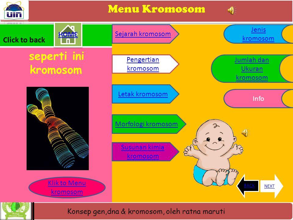 Menu Kromosom Click to back Jenis kromosom HOME Sejarah kromosom