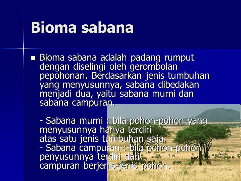 Bioma sabana