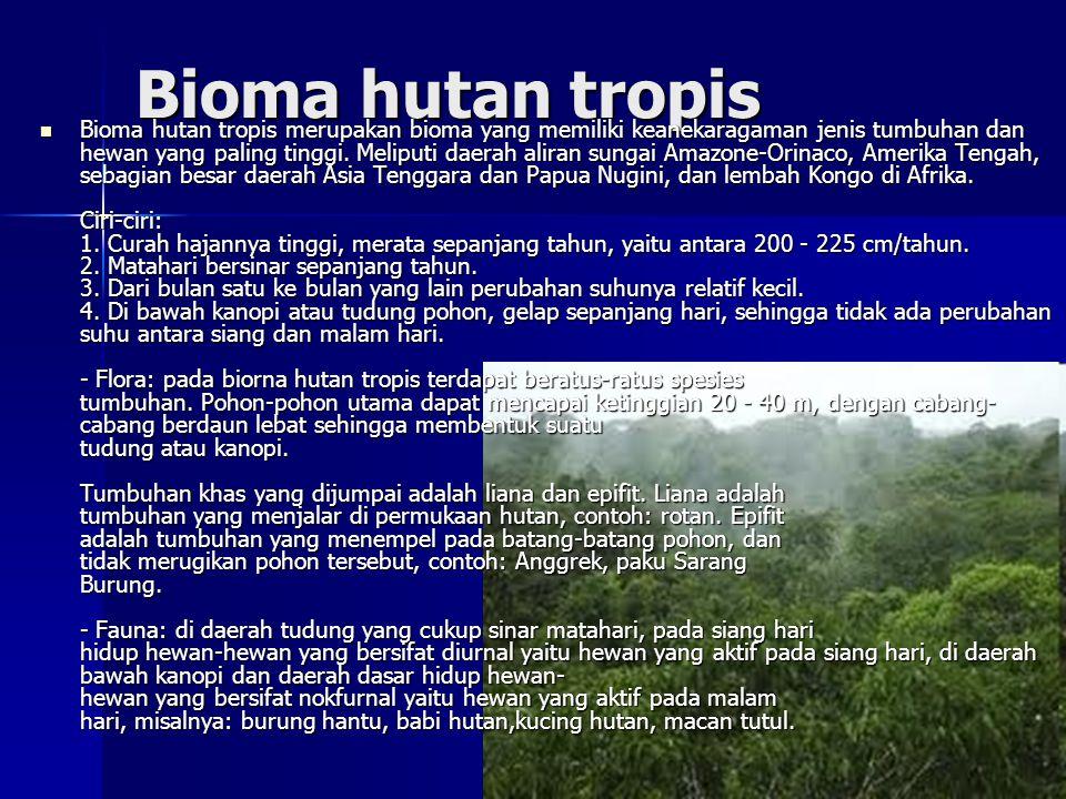 Bioma hutan tropis
