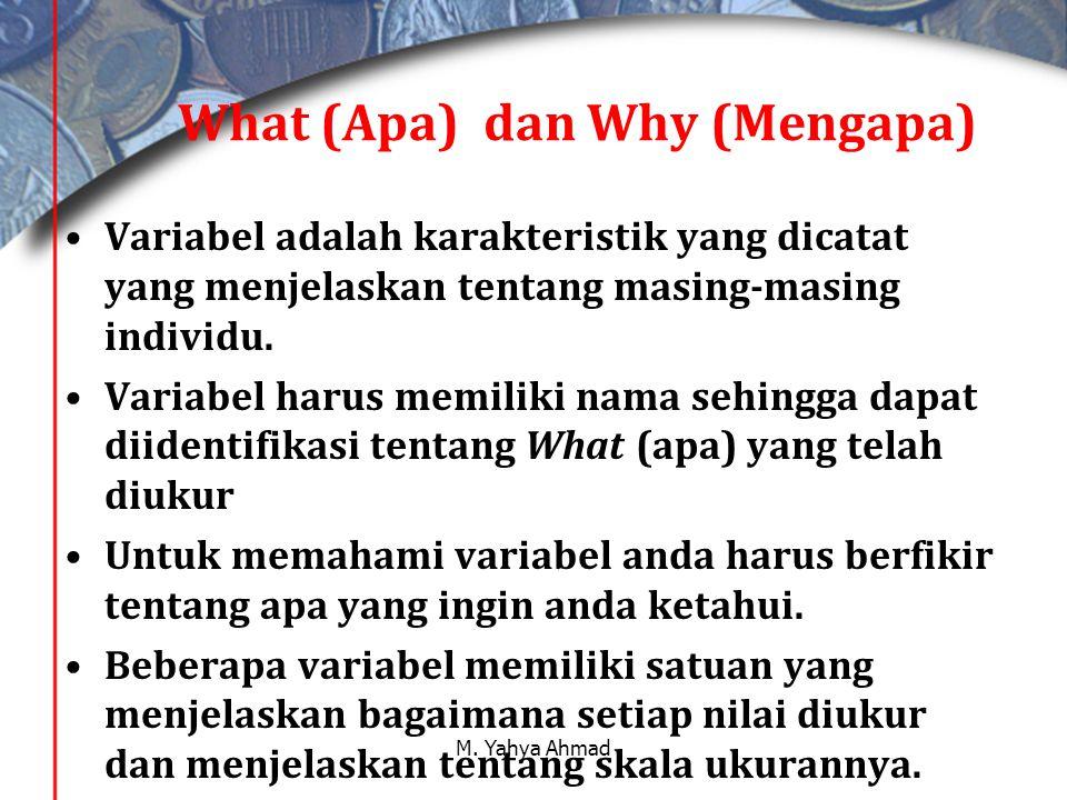 What (Apa) dan Why (Mengapa)