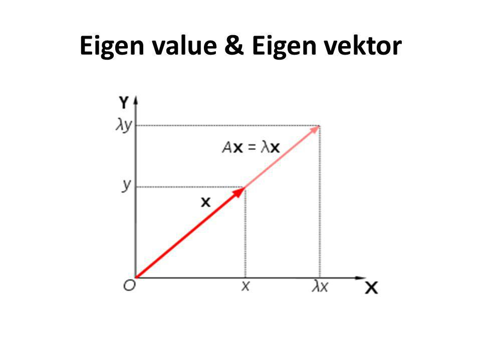 Eigen value & Eigen vektor